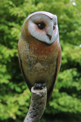 Barn Owl (Edition 7/12)