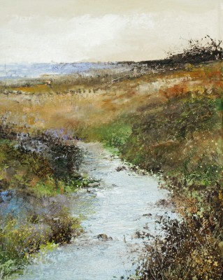 Amanda HOSKIN - A Cornish Stream near Cape Cornwall