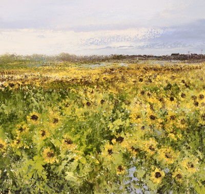 Amanda HOSKIN - Cornish Sunflowers