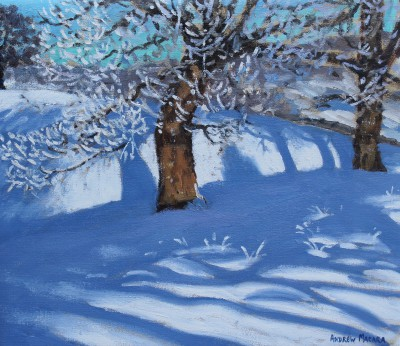 Andrew MACARA  - Winter Trees, Chatsworth