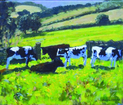 Andrew MACARA  - Friesian Cows and Calves
