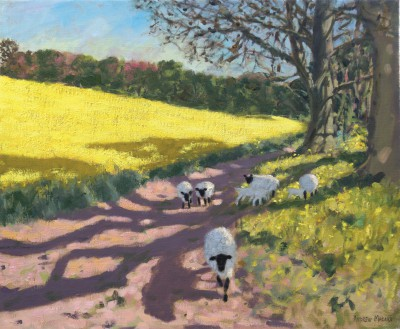 British Artist Andrew MACARA  - Yellow Field and Sheep
