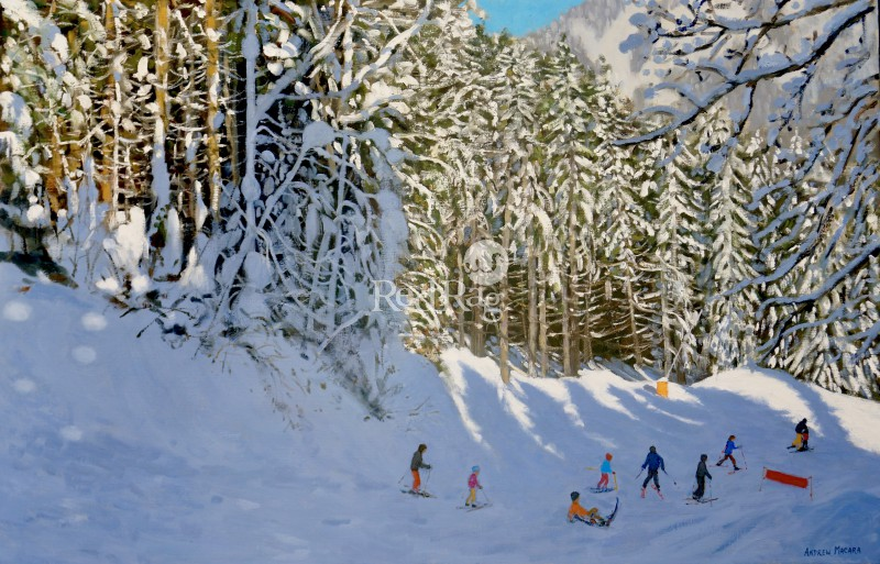 Andrew MACARA  - Trees and Shadows, Morzine, France