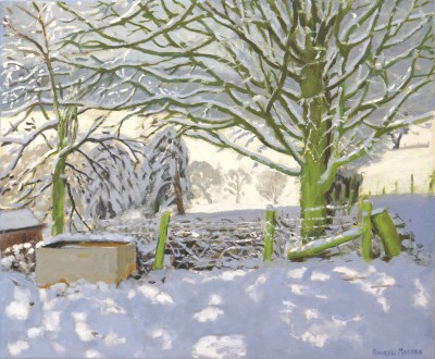 Andrew MACARA  - Water Trough, Upper Hulme, Leek