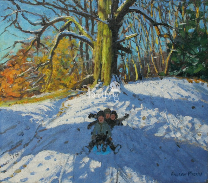 Andrew MACARA  - Three on a Sledge