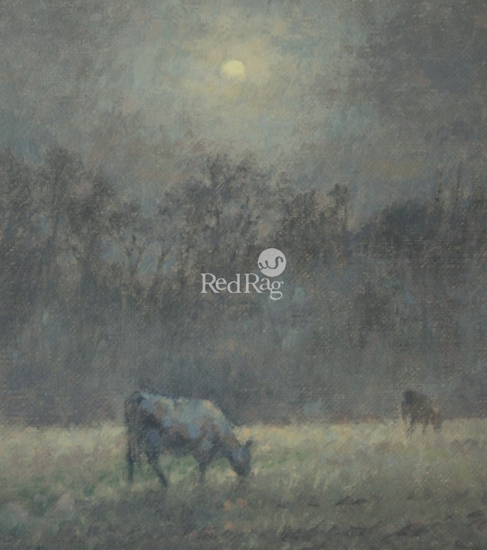 Ann HEAT RBA - Black Cows at Night