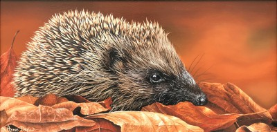 British Artist Annie DREW - Hedgehog