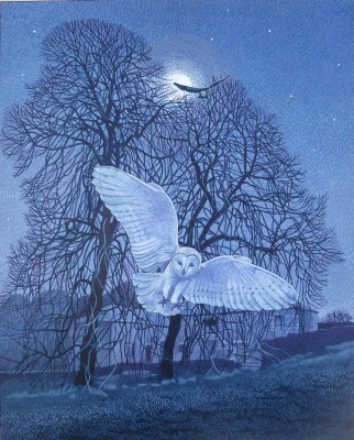 British Artist Annie OVENDEN - Owls in the Night