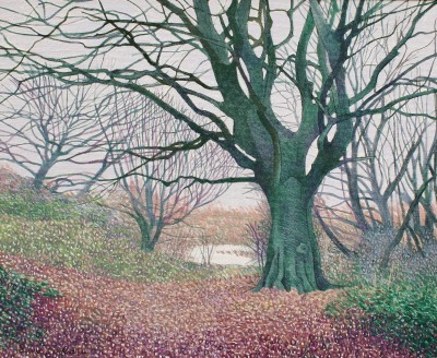 Annie OVENDEN - On the Bank of the River Tamar