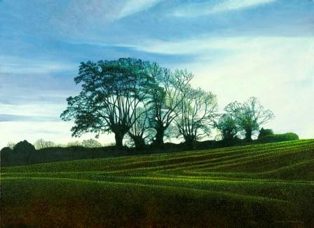 Annie OVENDEN - Folly Field II