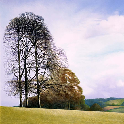 Annie Ovenden - February Morning in Lanhydrock Park