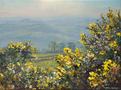 British Artist Mark PRESTON - April Gorse, Alport Height