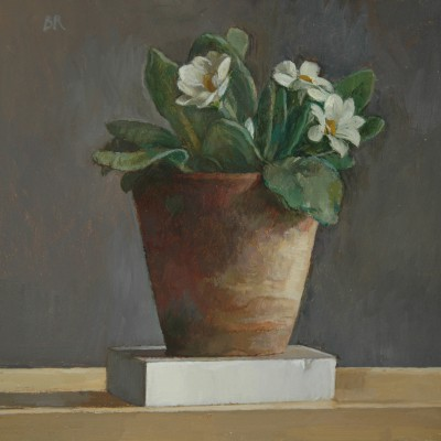 British Artist Barbara RICHARDSON  RBA - Primrose