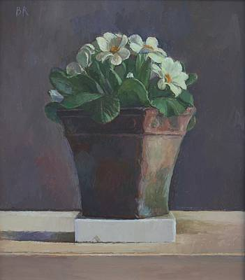 Barbara RICHARDSON  RBA - Primroses