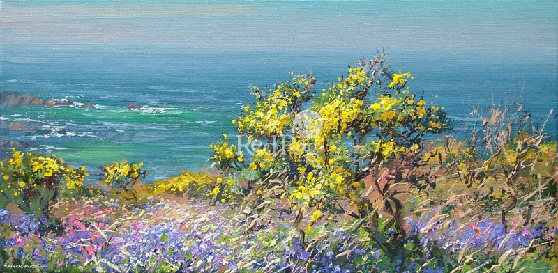 Mark PRESTON - Bluebells and Gorse, Portheras