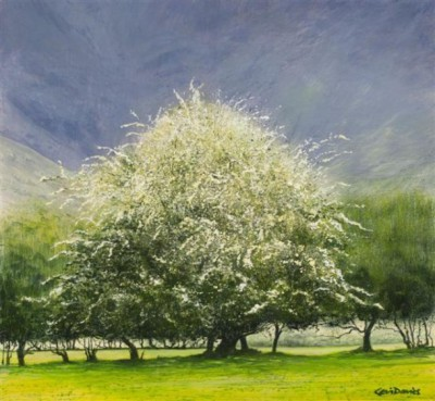Limited Edition Prints Artist Ceri Auckland Davies - Easter Tree