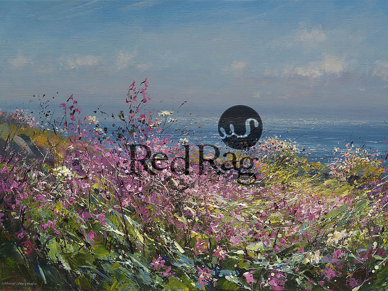 Mark Preston - Clifftop Flowers, Cornwall
