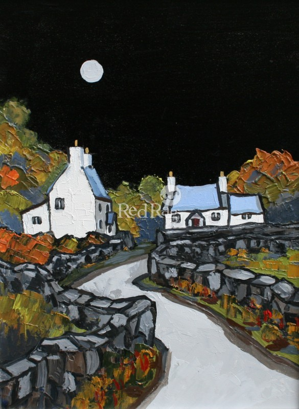 David BARNES - Moonlight on Llyn