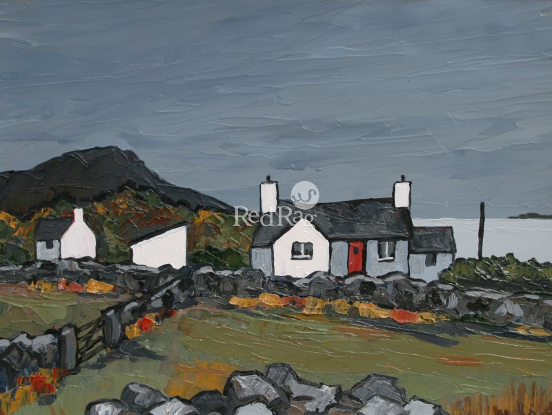 David BARNES - Cottages on Anglesey