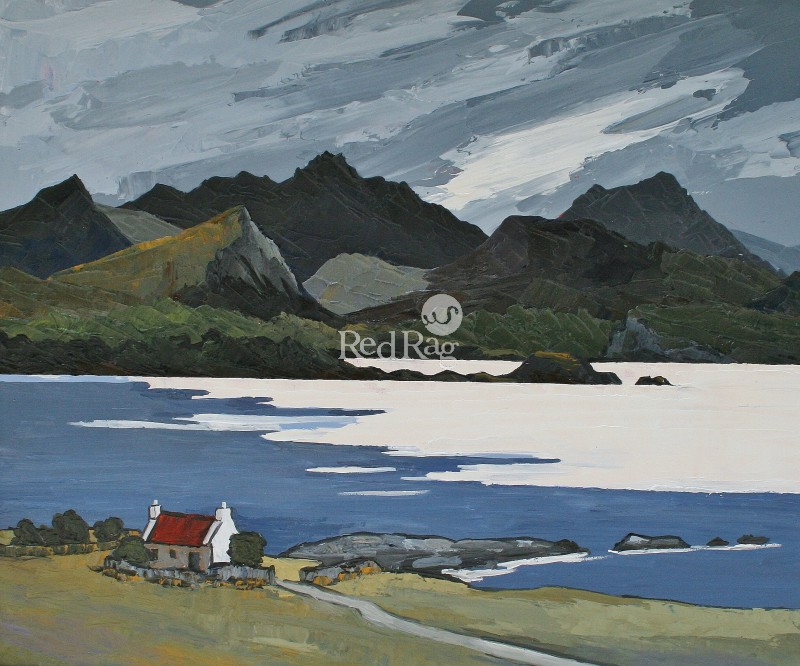 David BARNES - The Croft near Loch Maree