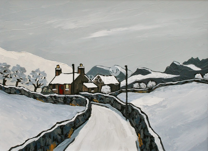David BARNES - The Denbighshire Moors in Winter
