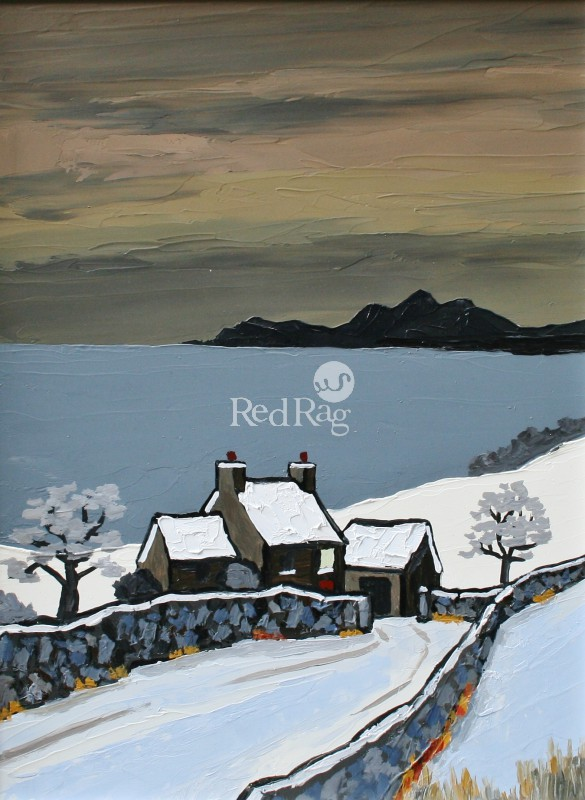 David BARNES - The Lleyn in Winter