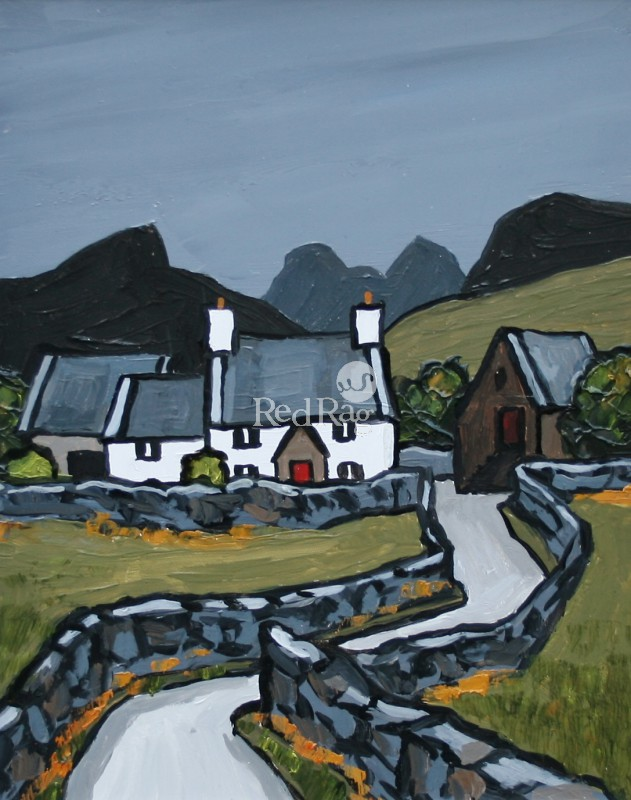David BARNES - Farm in Snowdonia