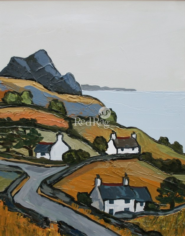 David BARNES - On the Lleyn Peninsula
