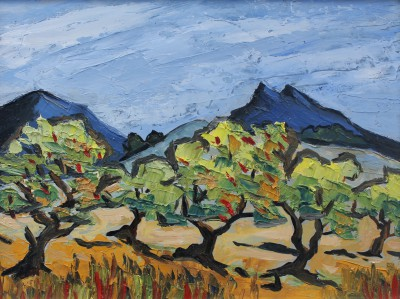 David BARNES - Olive Trees in Tuscany
