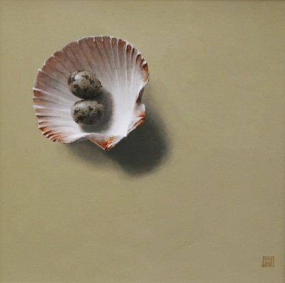 British Artist David GLEESON - Shells