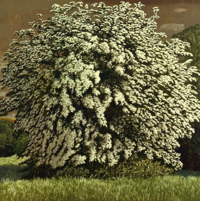 Limited Edition Prints Artist David Inshaw - The May Tree