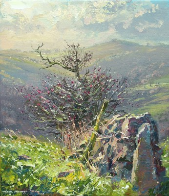 Mark PRESTON - December Sunlight, Wetton