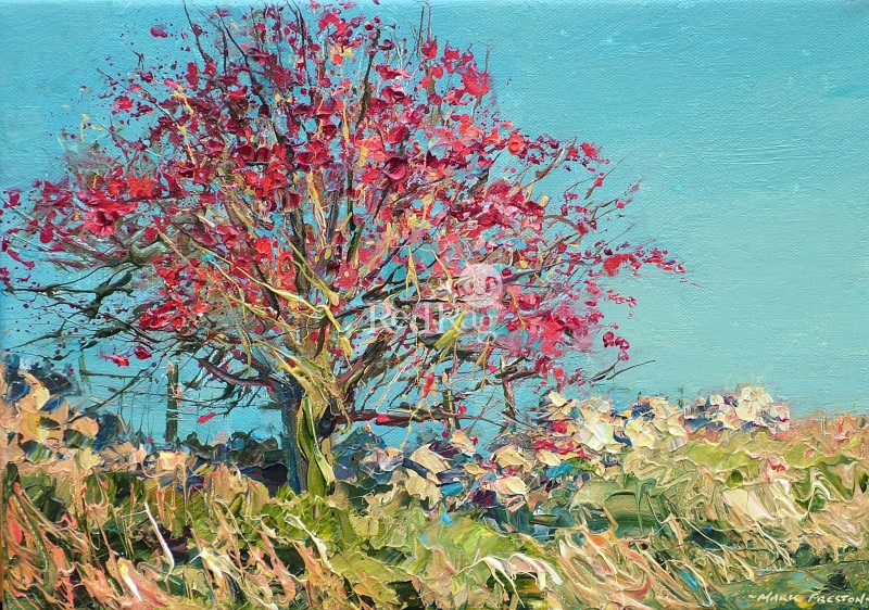 Mark PRESTON - Hawthorn Berries, Pilsbury