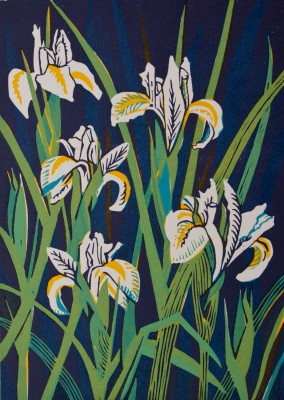 Limited Edition Prints Artist Linda Richardson - Dutch Irises