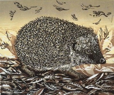 Linda Richardson - Autumn Hedgehog