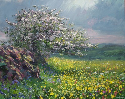 Mark PRESTON, contemporary artist - Hawthorn Blossom and Buttercups, Ashleyhay