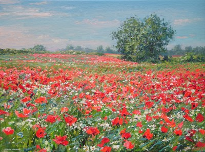 Mark PRESTON, contemporary artist&nbsp;-&nbsp;<span style='color:red;font-size: 200%'>&#8226;</span> Poppies and Blue Sky, Ednaston