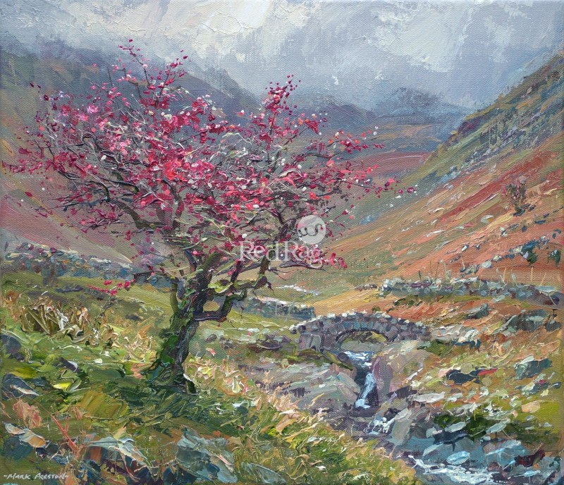 Mark PRESTON - Autumn Hawthorn, Stockley Bridge