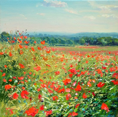Mark PRESTON - Field of Poppies, Aston-on-Trent
