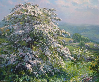 Mark PRESTON - Mayblossom, Alport Height
