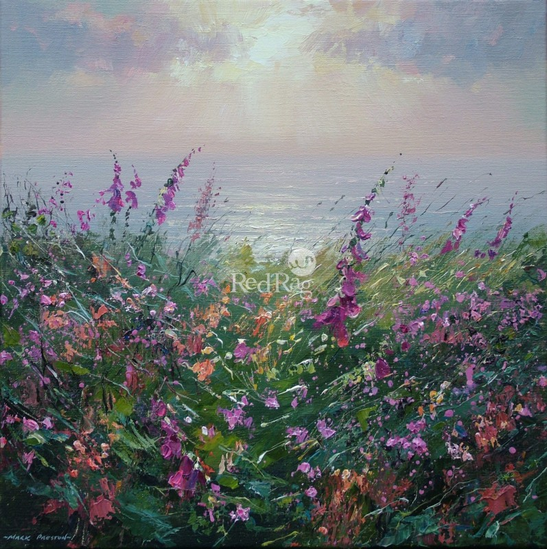 Mark PRESTON - June Evening, Rosewall Hill