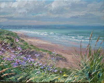 Mark PRESTON, contemporary artist - Seastock, Braunton Burrows