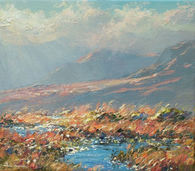 Mark PRESTON, contemporary artist - Sunlit Pools, Borrowdale