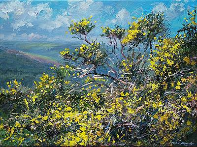 Mark PRESTON - May Gorse, Alport Height