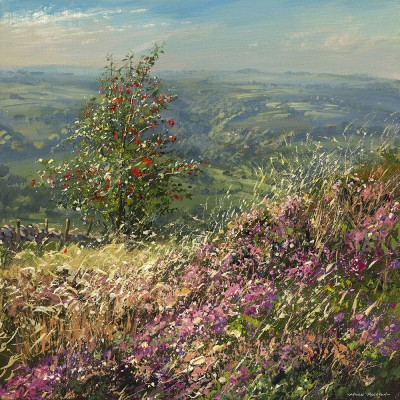 Limited Edition Prints Artist Mark Preston - Rowan Tree