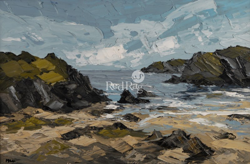 Martin LLEWELLYN - Porth Darfarch near Trearddur Bay