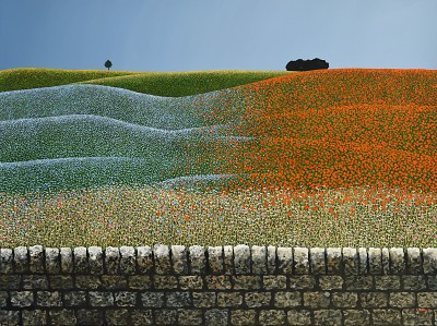 British Artist Michael KIDD - Flax and Poppies