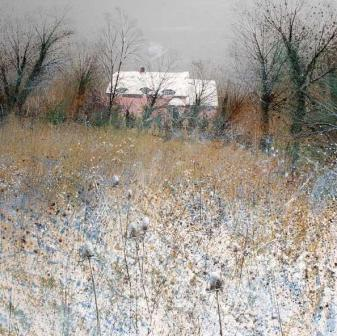 British Artist Paul Evans - Winter Teasel