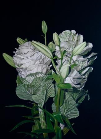 British Artist Paul STONE - Brassica and Lilies