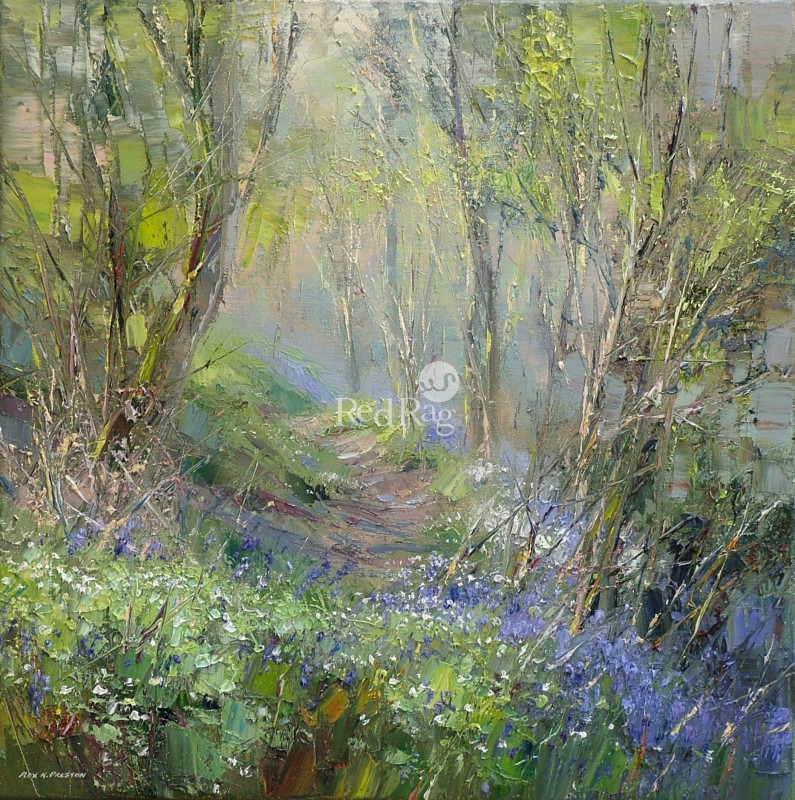 Rex PRESTON - Bluebells and Wood Anemones, Dovedale Woods